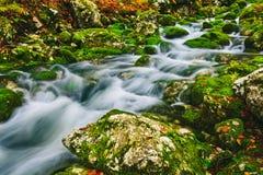 Détail de crique de montagne avec de l'eau les roches moussues et clair comme de l'eau de roche Photos stock
