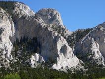 Détail de falaise de craie Images stock
