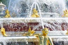 Détail de fontaine fleurie d'or Image stock