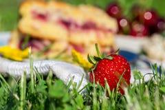 Détail de la fraise rouge fraîche devant le gâteau de cerise sur la serviette blanche dans l'herbe Images stock