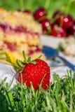 Détail de la fraise rouge mûre devant le gâteau de cerise sur la serviette blanche dans l'herbe Photographie stock libre de droits