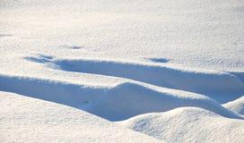 Détail de neige photo libre de droits