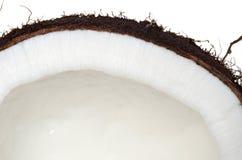 Détail de noix de coco Images libres de droits