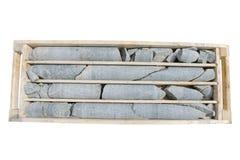 Détail de noyau de foret dans les boîtes prêtes pour la notation Photo stock