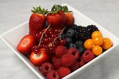 Détail de paraboloïde de fruit Photographie stock libre de droits