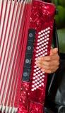 Détail de plan rapproché des mains jouant un instrument rouge d'accordéon Image libre de droits