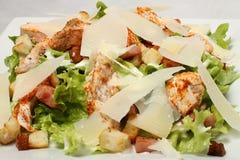 Détail de salade de poulet Image stock