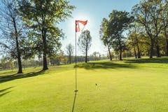 Détail de terrain de golf Photo libre de droits