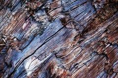 Détail de vieux bois cassé Images stock