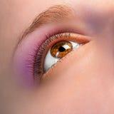 Détail de yeux Images stock