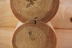 Détail des faisceaux dans le mur de carlingue bois non peint photos libres de droits