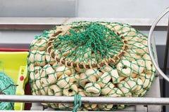 Détail des filets de pêche Images stock