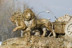 Détail des lions de Cibeles, Madrid, Espagne Photos libres de droits