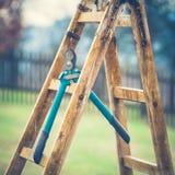 Détail des sécateurs de jardinage Hang Up sur une échelle de jardinage Images libres de droits