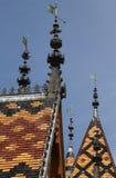 Détail des toits de l'hôtel Dieu Images libres de droits