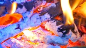 Détail du feu bleu du bois dur brûlant Bois brûlants en air chaud de frisson Petites flammes de la danse et de briller par fluore banque de vidéos