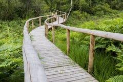 Détail en bois de sentier piéton Image stock