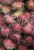 Détail frais de plan rapproché de fruit de ramboutan Images stock