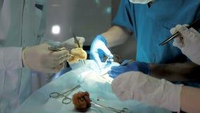 Détail haut étroit d'une chirurgie clips vidéos