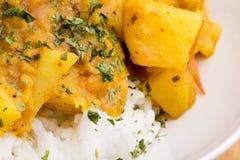 Détail indien de nourriture image stock
