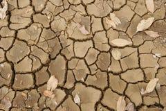 Détail sec criqué de boue photos libres de droits