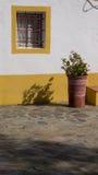 Détail typique de fenêtre de l'Alentejo image libre de droits