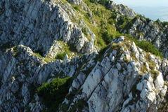 détaille des montagnes roumaines Photographie stock