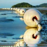 détaille le filet de pêche image libre de droits
