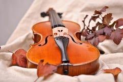 Détails d'un violon Photos stock