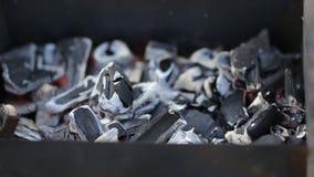 Détails de charbon de bois pour le barbecue, chiche-kebab au pique-nique banque de vidéos