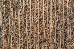 Détails de foin Photos libres de droits