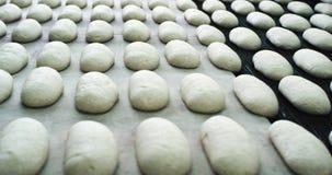 Détails de secteur de la boulangerie sur la pâte crue de convoyeur placée sur la ligne automatisée, l'industrie alimentaire clips vidéos