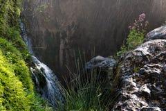 Détails des sources de la rivière Algar dans Alicante, Espagne Photo libre de droits