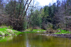 Détend en rivière Photographie stock