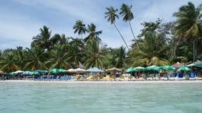 Détendez la plage en mer des Caraïbes, Dominicana photo libre de droits