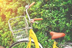Détente avec la bicyclette jaune au jardin public Photo libre de droits