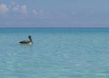 Détente dans l'océan Photos libres de droits