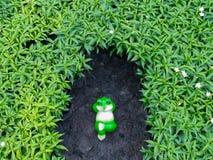 Détente de poupée de grenouille Images stock
