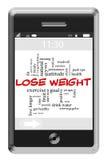 Détruisez le concept de poids au téléphone d'écran tactile illustration de vecteur
