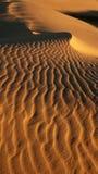 Détruit dans le désert Photo libre de droits