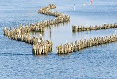 Déversoir historique d'harengs Photos libres de droits