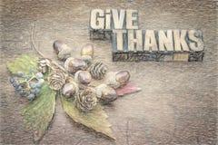 Dê agradecimentos - conceito da ação de graças Foto de Stock