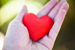 Dê o homem do amor que guarda o coração vermelho pequeno nas mãos para o dia de Valentim do amor doam a ajuda dão o calor do amor imagens de stock royalty free