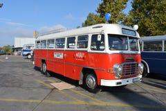 Día abierto del público en el garaje de 40 años Cinkota XI del autobús Fotos de archivo libres de regalías