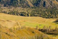 Día asoleado Colinas verdes y campos Imágenes de archivo libres de regalías