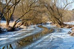 Día asoleado en paisaje del invierno Foto de archivo libre de regalías