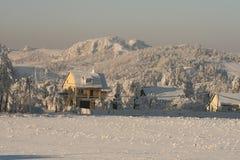 Día brillante en la nieve Foto de archivo libre de regalías
