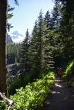 Día-caminar el soporte Rainier National Park Foto de archivo libre de regalías