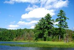 Día claro en el lago Foto de archivo libre de regalías