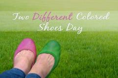Día coloreado de dos diverso zapatos Fotos de archivo